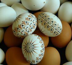 Kraslice v přírodních tónech B4 Velikonoční kraslice zdobená tradiční technikou - reliéfním nanášenímvčelího vosku pomocí špendlíkové hlavičky. Vzor na vajíčku vychází ze slovenských kraslicových vzorů a je převeden do reliéfního zdobení. Na dekorování jsem použila včelí bělený vosk, který jsem obarvila pigmenty rozpustnými v tucích. Tento vzor je ...