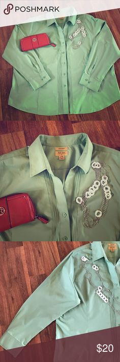 Gold Label No Iron Button Down LIKE NEW!  Pastel green.  Perfect for spring.  Plus Size 24W.  No iron fabric for easy washing.  100% cotton.  Form fitting and flattering.  Long sleeve button down with collar.  Feminine and classy. Roundtree & Yorke Tops Button Down Shirts