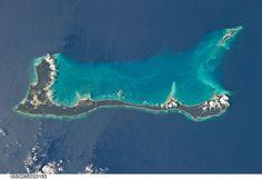 #CatIsland en Bahamas
