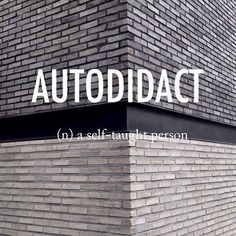 Many scientists were 'auto-didact'! Unusual Words, Weird Words, Rare Words, Unique Words, New Words, Cool Words, Beautiful Words In English, English Words, Fancy Words