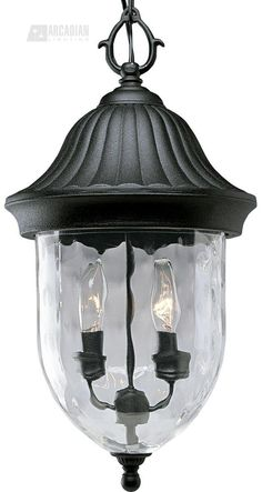 Progress Lighting P5529-31 Coventry Traditional Outdoor Hanging Lantern PG-P5529-31