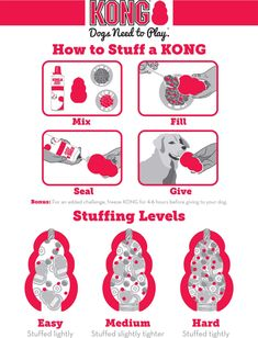 Whether you're looking for KONG toys for small dogs or KONG toys for large dogs, we've got the ultimate guide to the different types of KONG toys, how to use a KONG toy, KONG dog toy recipes and more. Pet Dogs, Dogs And Puppies, Pets, Chihuahua Dogs, Kong Dog Toys, Dog Chew Toys, Dog Enrichment, Dog Games, Homemade Dog Treats