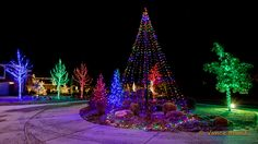 christmas tree flag pole christmas lights can decorate a flag pole Christmas Lights Outside, Hanging Christmas Lights, Christmas Holidays, Christmas Trees, Xmas, Celebrating Christmas, Christmas Tree Pictures, Christmas Light Installation, S Pic