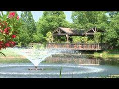Home | Clark Gardens Clark Gardens, Wedding Reception, Wedding Venues, Weatherford Tx, Mineral Wells, Congratulations And Best Wishes, Garden Park, Wedding Honeymoons, Texas Travel