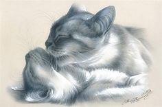 Беседка : Изумительные коты художницы Ирины Гармашовой