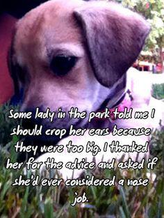 I like PostSecret, but I really like this postcard. I don't like cropping ears or docking tails.