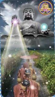 Nam Mô A Di Đà Phật #anhphat #ducphat #Phat Buddha Painting, Buddha Art, Buddha Wallpaper Iphone, Buddha Quotes Life, Buddhist Teachings, Buddha Tattoos, Good Night Messages, Gautama Buddha, Fantastic Art