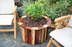 Stylish and Low Cost 55 Gallon Drum Planters : 15 Steps (with Pictures) - Instructables Outdoor Planters, Diy Planters, Garden Planters, Outdoor Gardens, Plastic Barrel Planter, Diy Drums, Plastic Drums, 55 Gallon Drum, Plantation