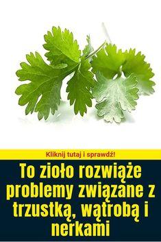To zioło rozwiąże problemy związane z trzustką, wątrobą i nerkami Herbs, Health, Garden, Food, Portal, Drinks, Cake, Recipes, Decor