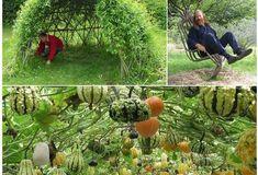 16 idee su come realizzare degli angoli spettacolari nel proprio giardino con delle rampicanti