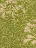 lovely green fabric I might use