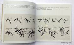 """Chinese Painting Book """"How to Paint Bamboo by Zhu Anfeng"""" Oriental Asian Art 