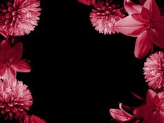 flowers animation images | flowers pretty Glitter Pink Backgrounds Free Pink Backgrounds Animated ...