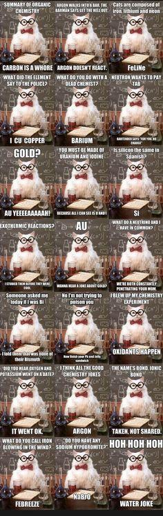 Chemistry Cat Meme                                                       …                                                                                                                                                                                 More