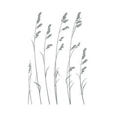 Add the soothing, relaxed charm of this Wind Blown Dune Removable Wall Art to your bath or bedroom to create a coastal retreat atmosphere. Depicting sea oats blowing in the breeze as though situated at...  Find the By the Beach Removable Wall Art, as seen in the Decals Collection at http://dotandbo.com/category/decor-and-pillows/for-the-wall/decals?utm_source=pinterest&utm_medium=organic&db_sku=103420