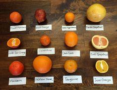 12 Citrus Varieties