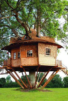 Explore treehousecompany's photos on Flickr. treehousecompany has uploaded 98 photos to Flickr.