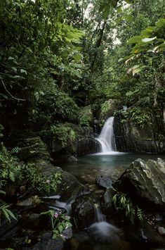 """Waterfall in Tropical Rainforest""  Much appreciated by www.escape2tropics.com"