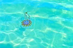 pensacola beach jelly.
