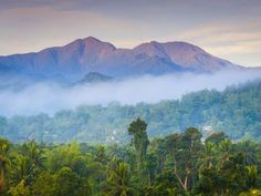 Blue Mountains, Portland Parish, Jamaica, Caribbean Photographic Print by Doug Pearson at Art.co.uk