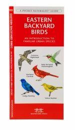 Eastern Backyard Birds Pocket Naturalist Guide