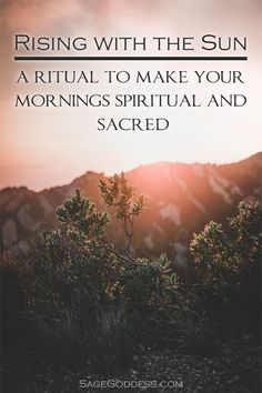 Energetic Agency and the Power of the Sun Waking up with the sun is your first step to authentic age Spiritual Practices, Spiritual Life, Spiritual Quotes, Spiritual Wellness, Spiritual Enlightenment, Morning Ritual, Morning Prayers, Wicca, Pagan