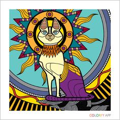 My Egyptian friend from COLORFY.