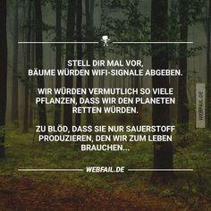 Kraft für die Seele...ist ein Pups auch Sauer-stoff?...die Bäume sind schuldfrei!