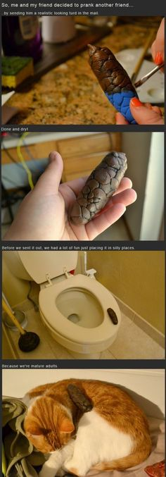 Pranking Your Friend With A Fake Poo