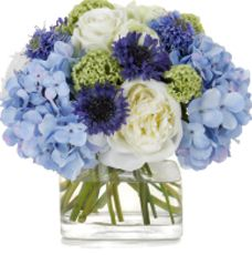Low Full Centerpiece With Blue Hydrangeas, White Peonies and Roses Accented With Bachelor Buttons (Cornflowers) and Green Viburnum in Cube or Cylinder.