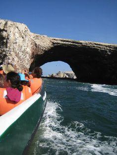 Islas Ballestas - Paracas Ica