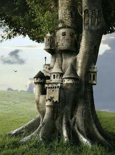 Fairy castle in a tree!