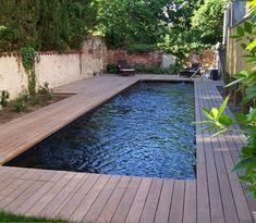 Backyard Plan, Backyard Pool Designs, Small Backyard Pools, Ponds Backyard, Outdoor Pool, Swimming Pools Backyard, Swimming Pool Designs, Moderne Pools, Rectangular Pool