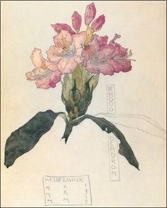 Charles Rennie Mackintosh - Rhodendron