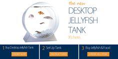 Desktop Jellyfish Tank ( I hate jellyfish, but very interesting) Jellyfish For Sale, Jellyfish Tank, Jellyfish Aquarium, My Animal, Animal Care, Beta Fish, Tank I, I Am Awesome, Jellyfish