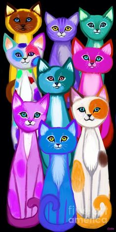 Crazy Cat Lady, Crazy Cats, Cat Quilt, Cat Colors, Here Kitty Kitty, Animal Drawings, Cat Art, Cats And Kittens, Cute Cats