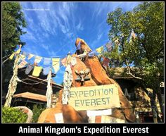 Expedition Everest at Disney's Animal Kingdom Theme Park - guide to the attraction.