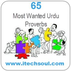 65 Most Wanted Urdu Proverbs and Its Roman Urdu and English Translation