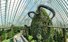 futuristic garden Singapore Garden, Singapore Travel, Futuristic Architecture, Landscape Architecture, Architecture Portfolio, Cades, Sustainability Projects, Crop Pictures, Permaculture Design