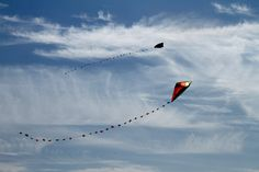 We need to get our kite out this spring that we got in Cannon Beach! Go Fly A Kite, Kite Flying, Cute Posts, Cannon Beach, Cool Pictures, Sweatshirt, Hoodie, Kites, Mugs
