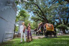 #ช่างภาพมืออาชีพ #ช่างภาพงานแต่ง #ช่างภาพรับปริญญา #WeddingPhotographer #Wedding #รับถ่ายภาพ #ถ่ายภาพพรีเว็ดดิ้ง #PreWedding #ถ่ายแฟชั่น #ถ่ายอาหาร #ถ่ายภาพสินค้า #1cameraman #หนึ่งรับถ่ายภาพ ติดตามผลงานของผมได้ครับ  Fanpage : www.facebook.com/1Cameraman  FB: www.facebook.com/wasant.sonsawad  LineId: 1cameraman  Tel: 090-983-0080 Tel: 062-921-5524