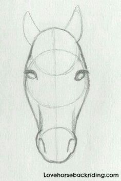 Horse Face Tutorial