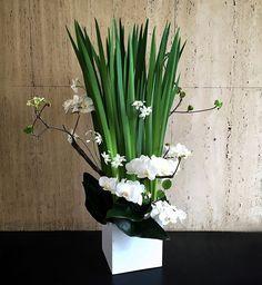 FUGAでは、和・洋・モダンなど様々な雰囲気でアレンジメント、スタンド花、ボックスギフトをオーダーメイドで対応する。 Modern Floral Arrangements, Ikebana Arrangements, Beautiful Flower Arrangements, Church Flowers, Funeral Flowers, Exotic Flowers, Amazing Flowers, Hotel Flowers, Corporate Flowers