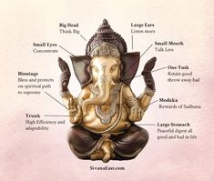 white ganesha, number of ganesh idols at home, ganesh laxmi sitting position, ganesh statues, ganesh statue meaning, what does ganesha represent, ganesha color meanings, where to place ganesh in the house