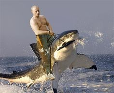 Top 70+ des photos «pendant ce temps en Russie…»