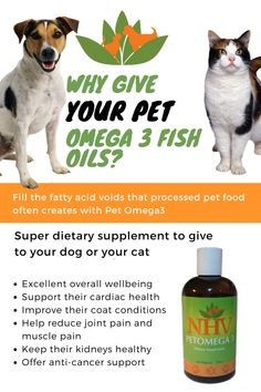 Lymphoma in dogs unfortunately most cancers in dogs and for How much fish oil to give dog