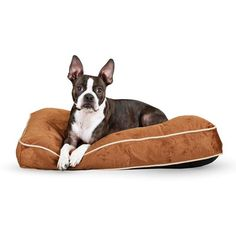 K&H Pet Products Tufted Pillow Top Bed Chocolate, Size: Large - 35L x 44W x 7.5H in.