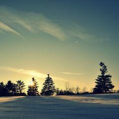 the quiet winter sun