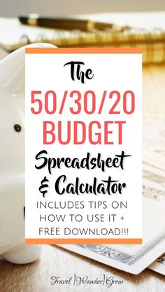 Interested in building your best budget yet? Get your free budget spreadsheet here, along with a detailed overview and instructions. Budget Spreadsheet Template, Excel Budget, Making A Budget, Create A Budget, Design Websites, Budgeting Finances, Budgeting Tips, Excel Design, Amigurumi