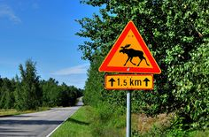 Finland - Mind the moose Finland Travel, Norway Travel, The Beautiful Country, Beautiful Places, Finland Country, About Sweden, Scandinavian Countries, Town And Country, Helsinki